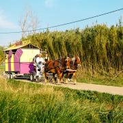 Atelier Luma Fondation Luma Maja Hoffman Arles mobilité musée mobile actus Tarascon matali crasset chevaux
