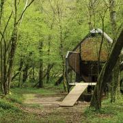 Vent des Forêts matali crasset feral houses shelter cabane Meuse