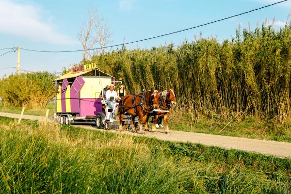 Ateliers Luma Fondation Luma Maja Hoffman Arles mobilité musée mobile actus Tarascon matali crasset chevaux